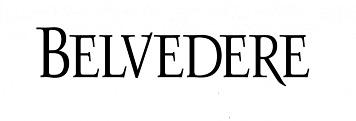 France: Belvedere records decline in sales