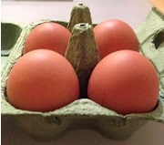 UK: Tesco to implement plastic egg boxes in food waste reduction initiative