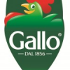 Italy: Riso Gallo launches new line of rice targeting ethnic groups