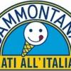Italy: Sammontana launches stevia-based ice lolly