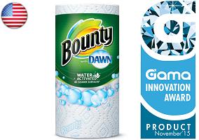 Gama Innovation Award: Bounty Kitchen Towel With Dawn