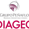 Argentina: Diageo sells wine interests to Grupo Penaflor