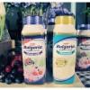 Thailand: CP Meiji launches new yoghurt drink