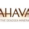 Israel: Fosun acquires Israeli Dead Sea mineral brand Ahava