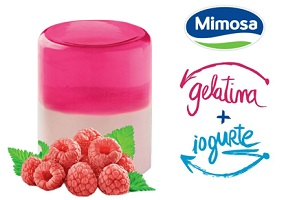 Portugal: Mimosa launches half-yoghurt, half-jelly dessert